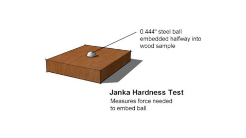 When deciding what wood to use in your home, consider the Janka Hardness Scale as an overall guide for durability.