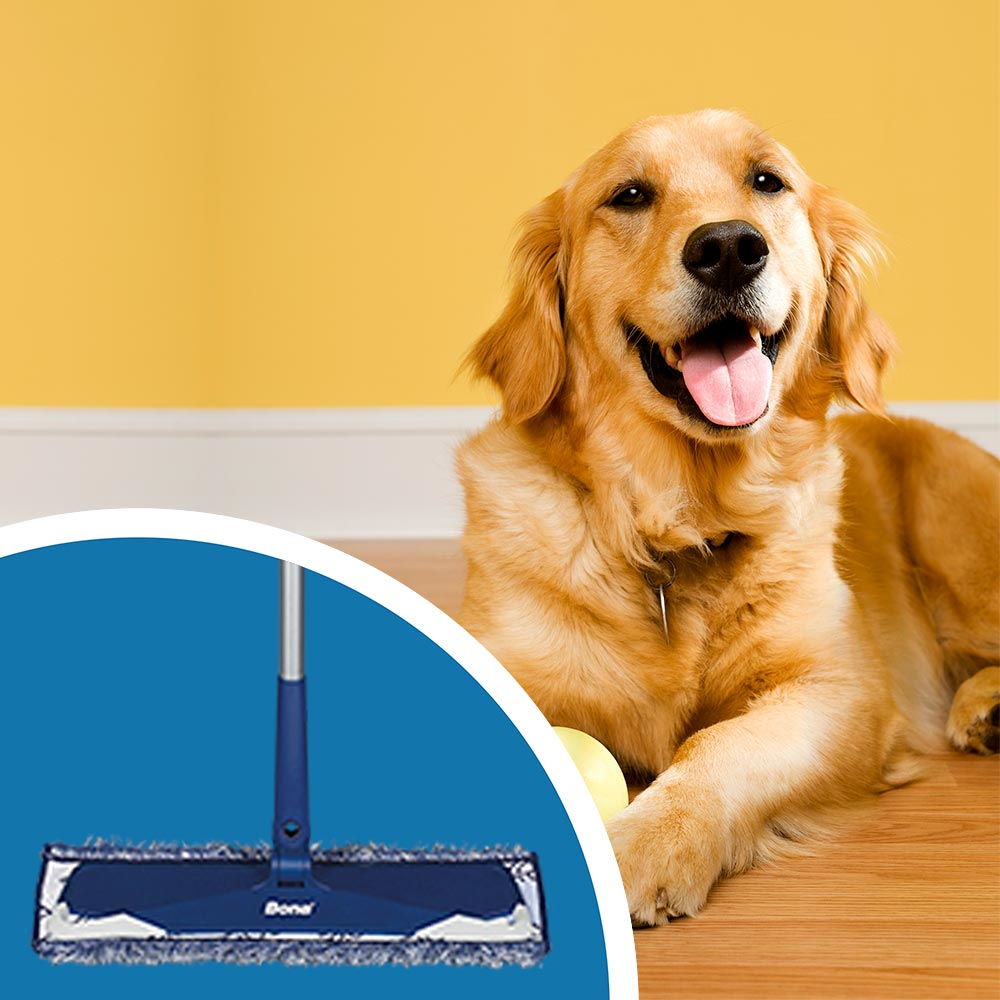 <p><strong>Use an effective floor cleaner to clean the floors with a microfiber mop.&nbsp;</strong>This weekly clean helps to remove any buildup not removed by dry mopping alone. Avoid using a traditional mop and bucket since it&rsquo;s easy to spread excess water on the luxury vinyl flooring. Excess liquids can get into the seams and edges of the floor and destroy the adhesive, making it come loose.</p><br/>